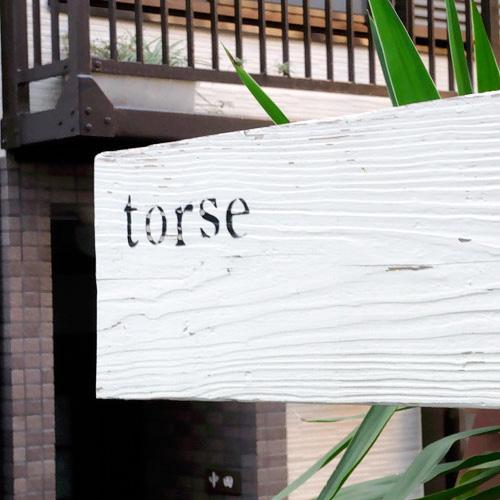 torse2